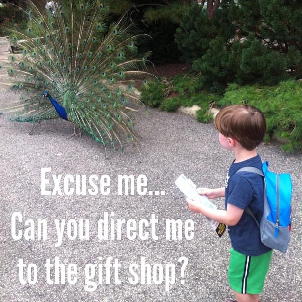 Excuse me...