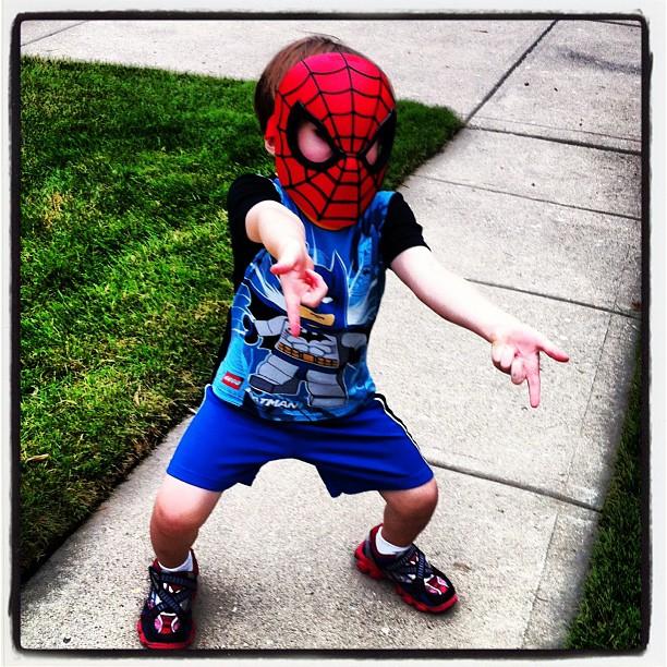 SpiderBatMax