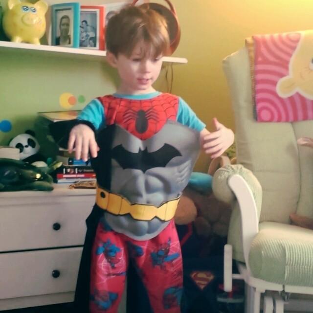Bat-SpiderMax