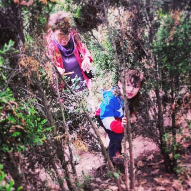 Forest Adventure