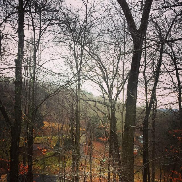Thanksgiving in West Virginia