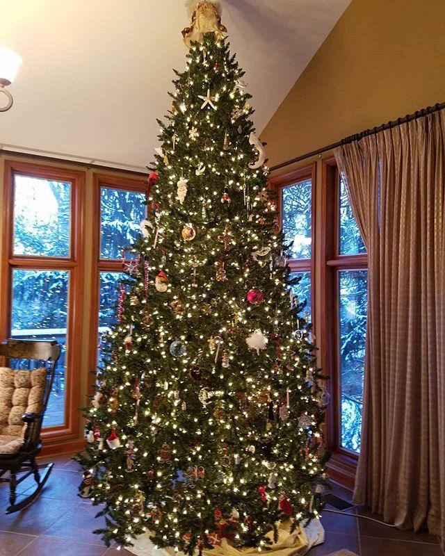 Windjammer Christmas Tree 2017